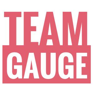 TEAMGAUGE_LOGO_INSTA